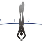 Aida freediving organisation logo1 180x180 - Verdensmestre i fridykning 2010