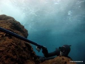 Kurser i undervandsjagt