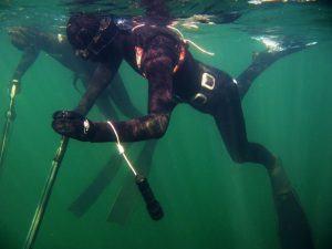 Undervandsjagt i oeresund