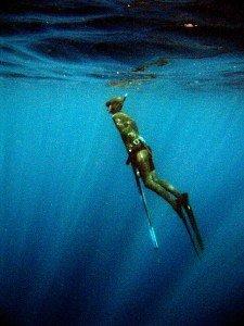 IMG 4149 225x300 - Harpun til undervandsjagt