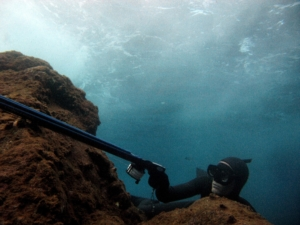 Undervandsjagt under bølgerne