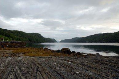 Norge er smukt - ogsaa under vandet