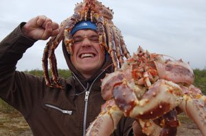 Kongekrabber fra Nordnorge er lette at fange med harpun