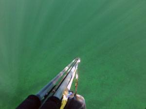 Harpunfiskeri - Harpun til undervandsjagt