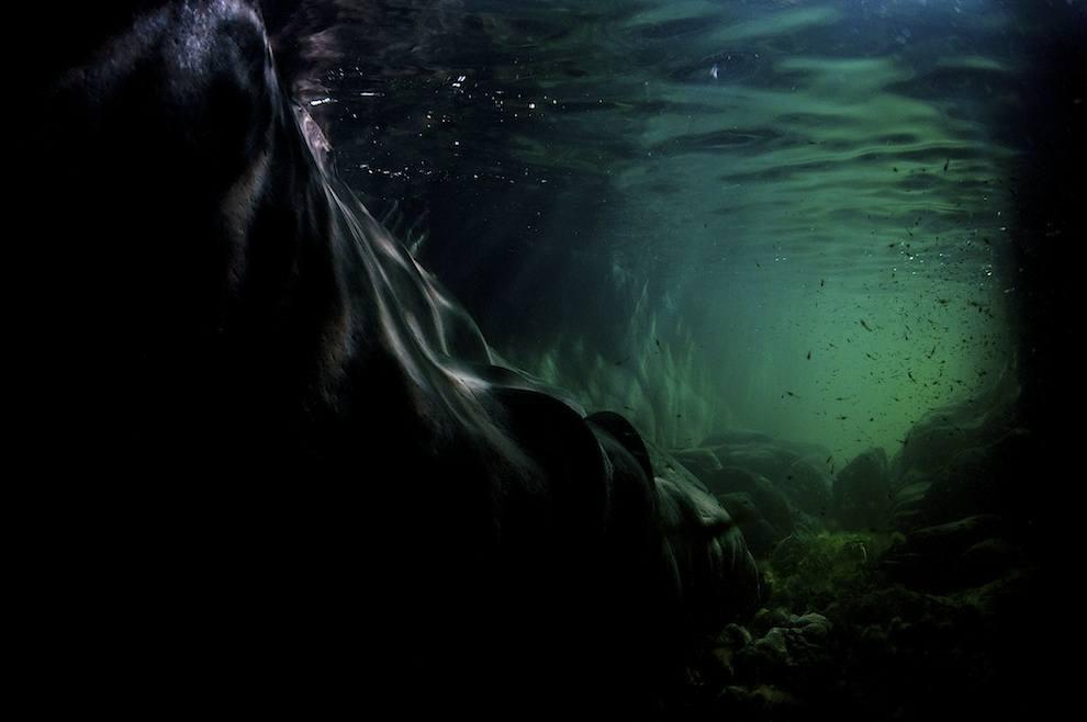 Uvfoto af klippehule på Bornholm