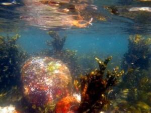 Foto på lavt vand