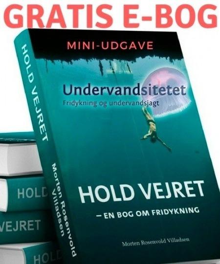 Hold vejret gratis ebog 1 450x540 - Hold Vejret E-bog. Hent gratis MINI-udgave