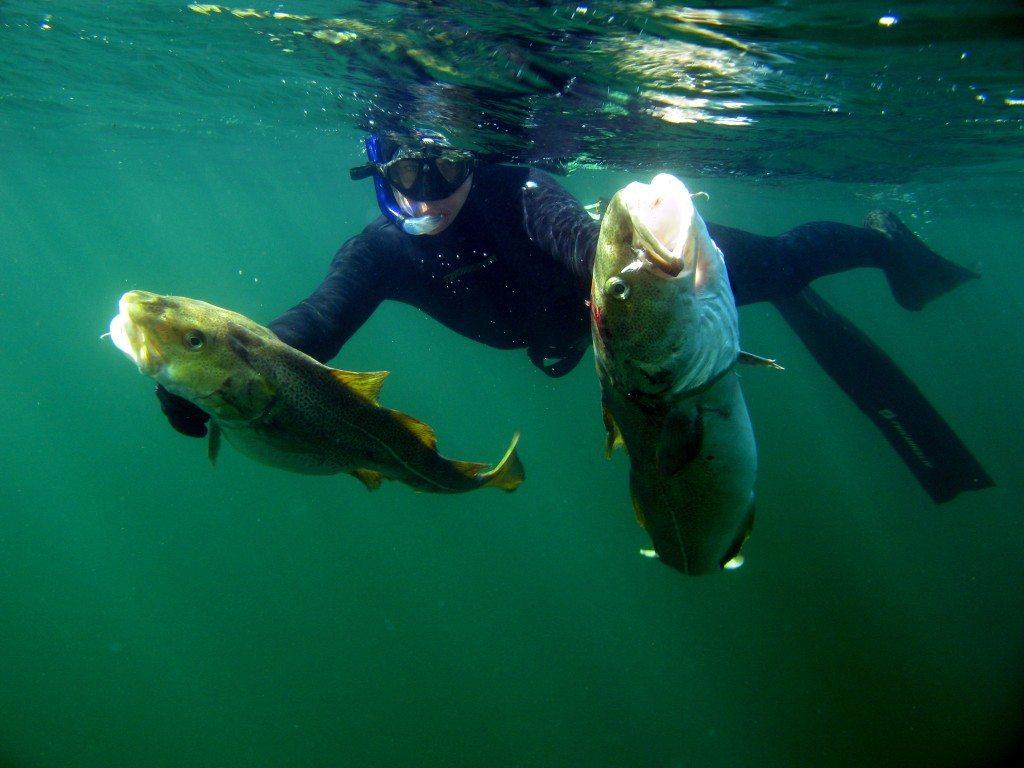Morten Villadsen 3 1024x768 - Fridykning og undervandsjagt på vrag