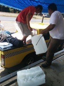 IMG 20140304 112310 001 225x300 - Undervandsjagt i Panama, Stillehavet