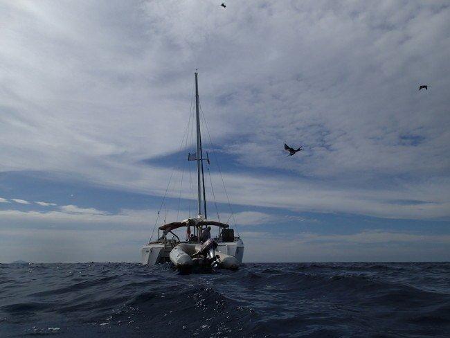 P3080070 e1423009098513 - Undervandsjagt i Panama, Stillehavet