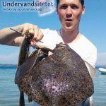 500 x 600 forside e boh 1 150x150 - Foredrag om fridykning, undervandsjagt og vejrtrækning (til arrangører)