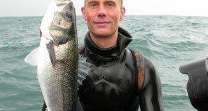 Johan with good seabass Morten Villadsen 300x160 - 009 Havbars med harpun