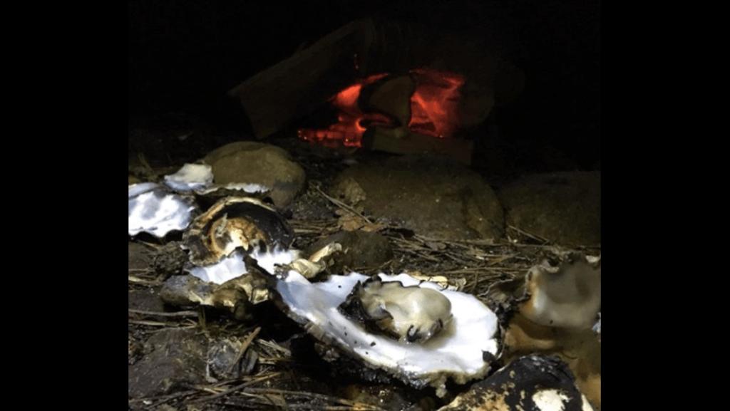 IMG 7699 1024x577 - Uv podcast 20 - spis tang, muslinger og krabber