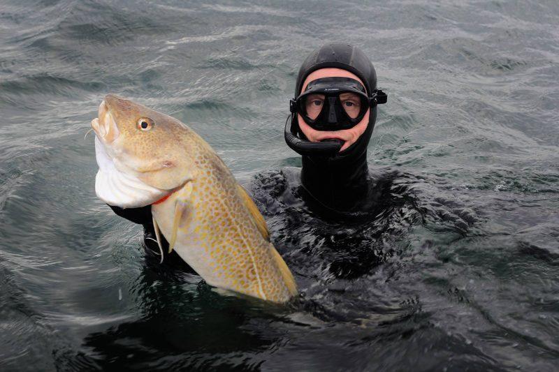 torsk undervandsjagt