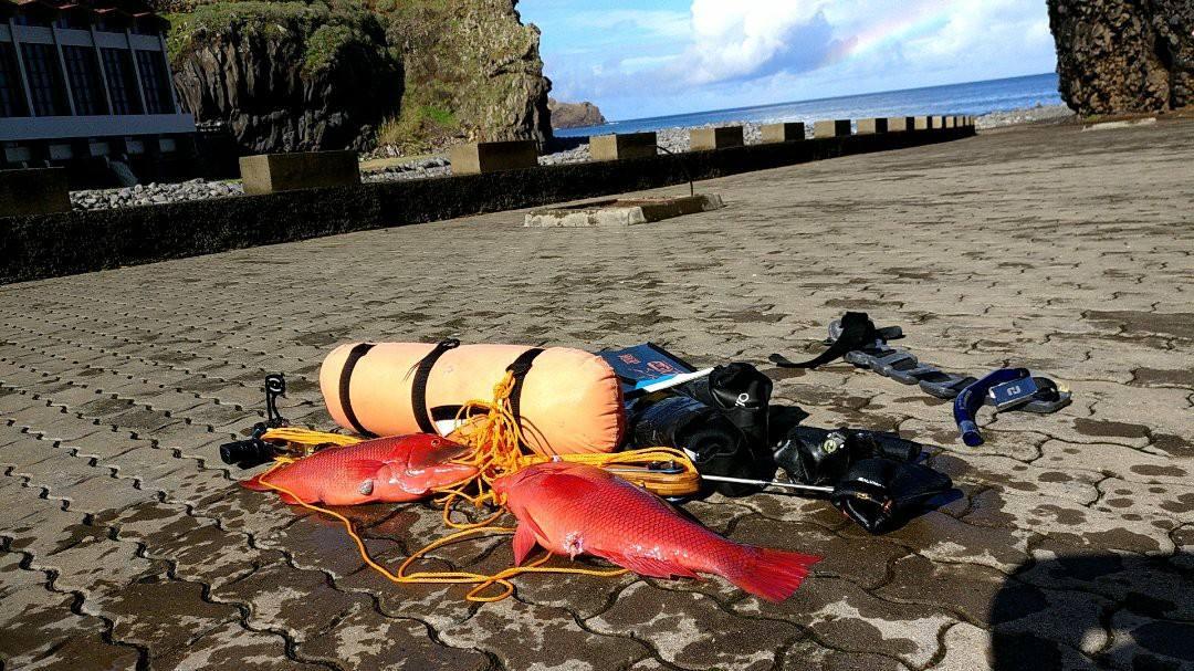 2 hogfish - Uv jagt på Madeira og Azorerne - Uvpodcast 27