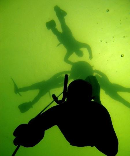 Fridykning Morten Villadsen 450x540 - Undervandsitetet - snorkling, undervandsjagt og fridykning