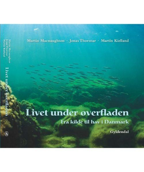 Livet under overfladen 500x600 - Livet under overfladen