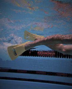 zoomers finner 243x300 - Zoomers svømmefødder og sprintfinner