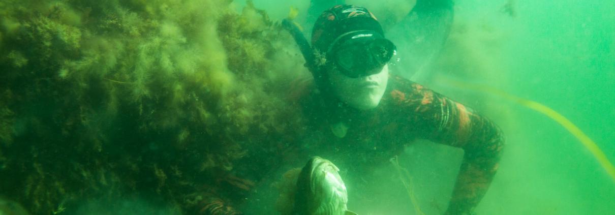 R4B2791 1210x423 - Dykkermaske til undervandsjagt
