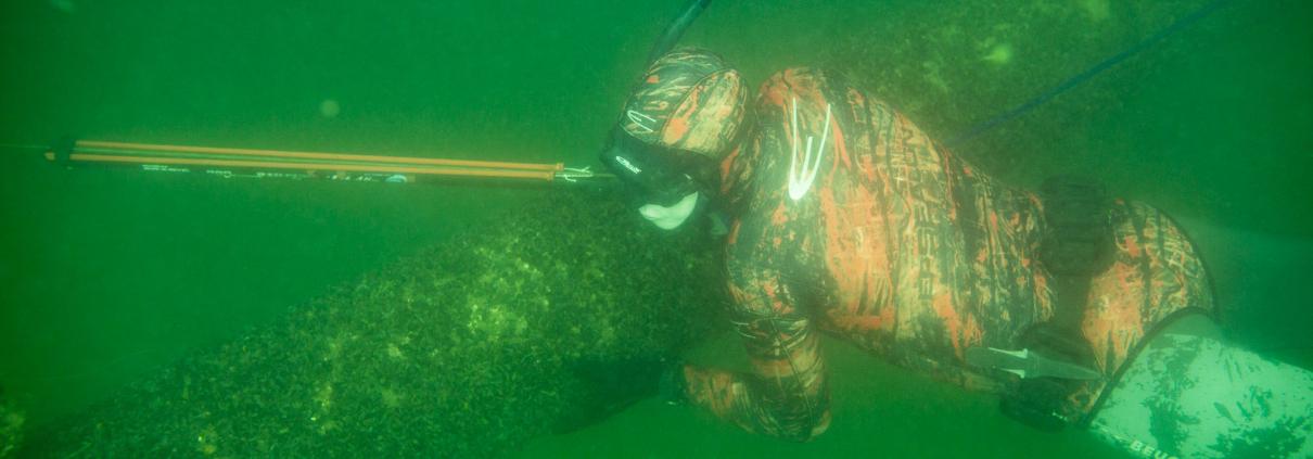 R4B3409 1210x423 - Harpun til undervandsjagt