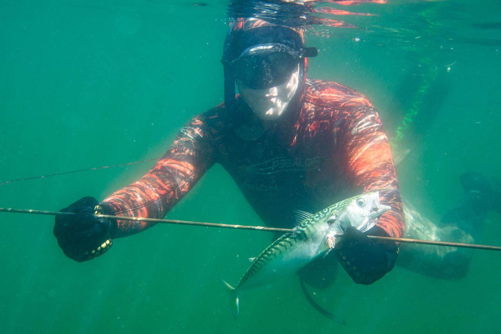 R4B3593 - Harpunfiskeri - hvordan er reglerne?